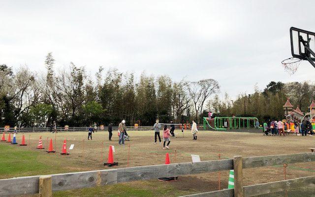 伊豆ぐらんぱる公園 芝生広場