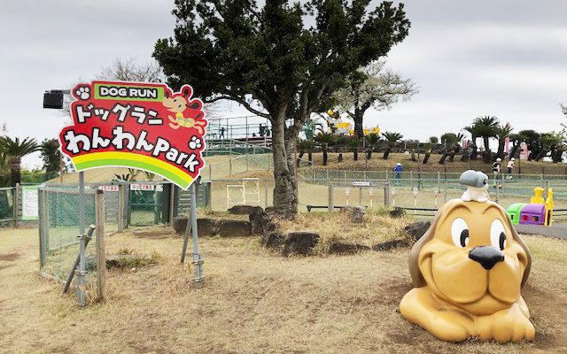 伊豆ぐらんぱる公園 犬